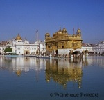India_Amritsar Golden Temple Reflection