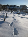 SnowFootprints_2