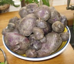 Aug - Salad Blue Potatoes