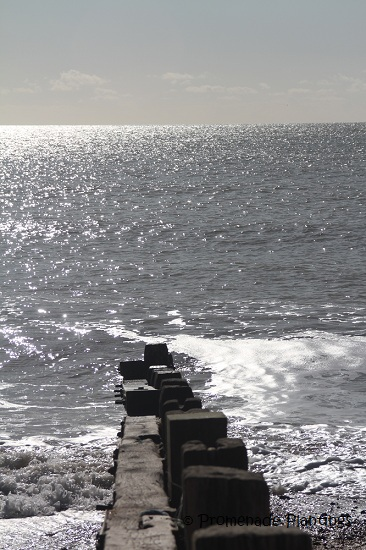 Sea and Groyne 2