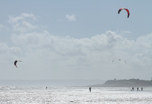 Kite Surfers and Dog Walkers