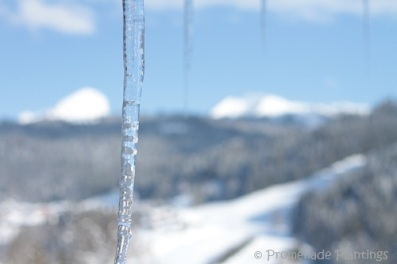 Icicle View