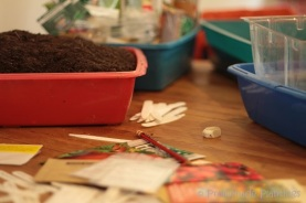 Seed Sowing_03_14_13