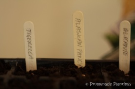 Tomato Seed Lables_03_14_13