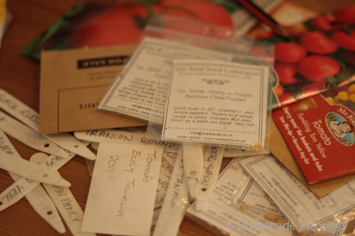 Vegetable Seed Packets_ 03_14_13