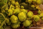 Brussel Sprouts_05_01_13 (3)