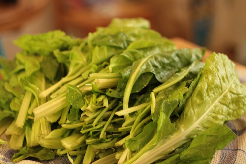 Spinach and Chard_05_22_13 (2)