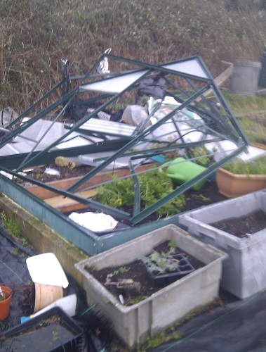 greenhouse_snap