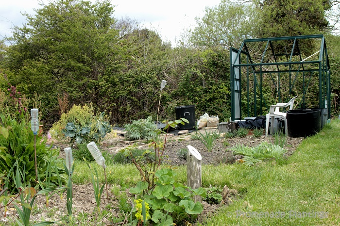 Allotment plot with greenhouse