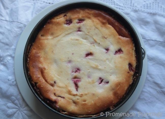 New York Style Strawberry Cheesecake (1)