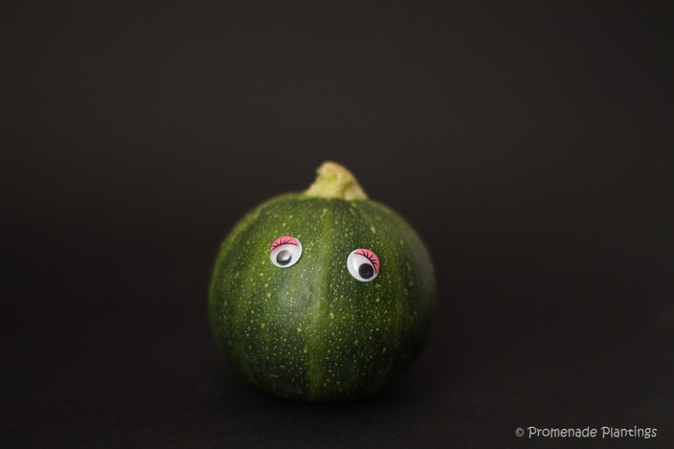 Courgette Googly eyes