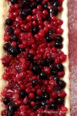 Classic Red Currant French Tartlets (4)