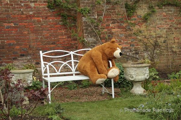 Lamb House Bear