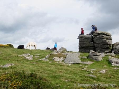 Devon Dartmoor tor 2