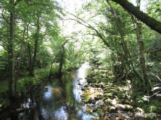 Devon River